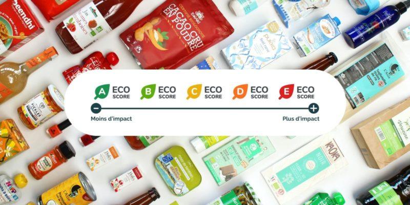 YZ Paris - Climat, Greenwashing et responsabilité publicitaire